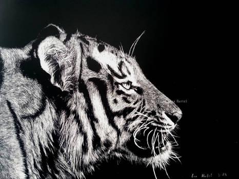 Tiger portrait II