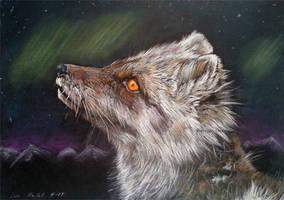 Arctic fox fire by BeckyKidus