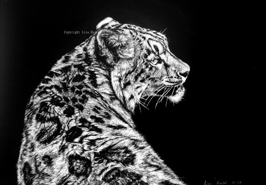 Snow leopard IV by BeckyKidus