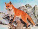 White Landscape - Red Fox