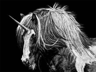 Unicorn IV by BeckyKidus