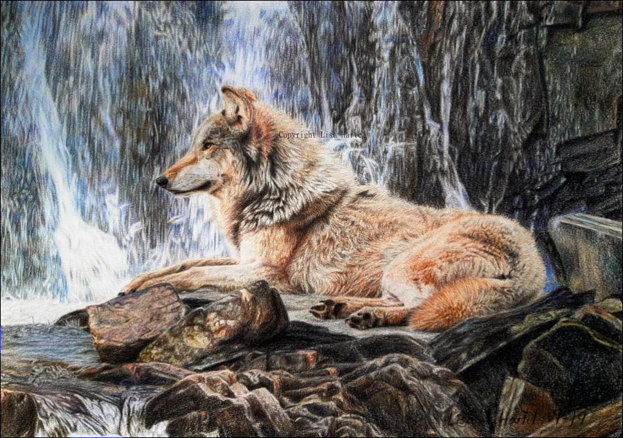 Wolf Waterfall