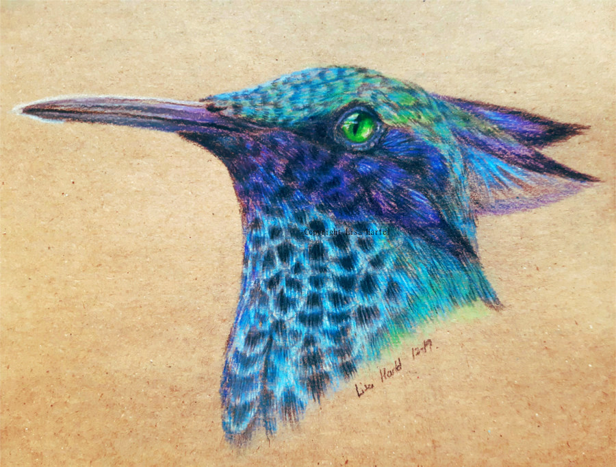 Hummingbird Griffin by BeckyKidus