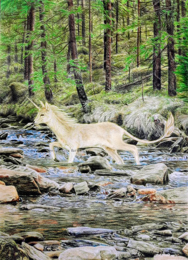 Unicorn Creek by BeckyKidus