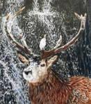 Stag Waterfall DETAIL by BeckyKidus