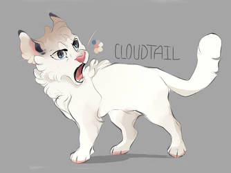 Cloudtail by Teparda