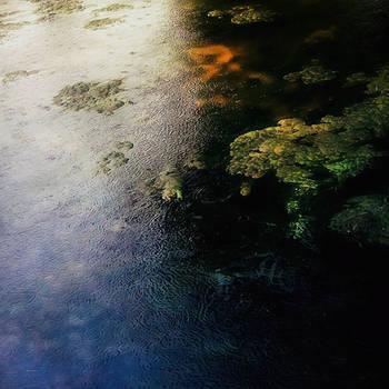 Impressions of the Rain by FiorellaDePietro
