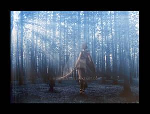 Into Bla Skog by LadyUndone