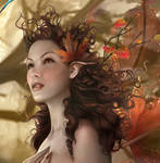 Closeup of Autumn Whisperlings by enayla