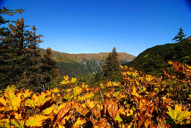 Mt. Roberts 01 by GabOrcinus