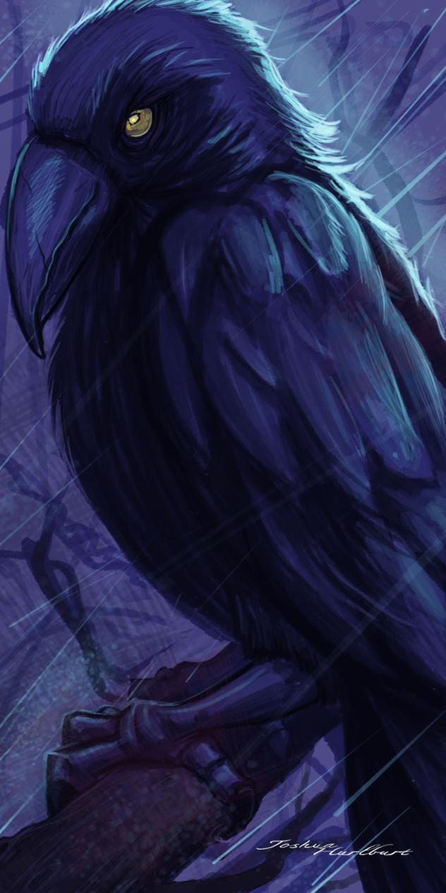 Raven by JHurlburt