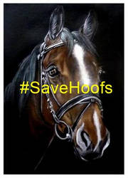 SaveHoofs