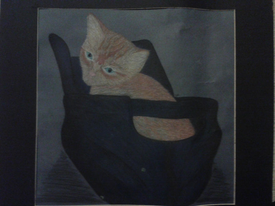 Orange Cat by DemonRed6