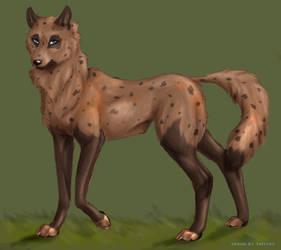 Gulch wolf wild dog Comish by TheTyro