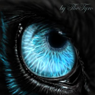 wolf of shadows eye by thetyro on deviantart