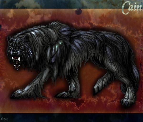 Cain__the_werewolf_by_TheTyro.jpg