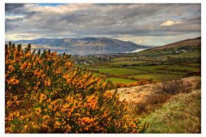 Ireland 58 by aniabeata