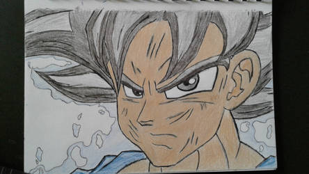 Migate no gokui Goku (old) by Johnsuky