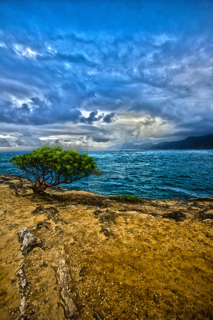 Laie Point (4044hdr)small by flatowlphoto