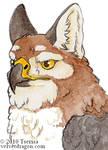 Badgerbird