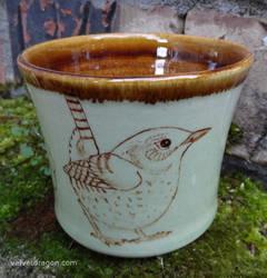 Winter Wren Cup