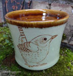 Winter Wren Cup