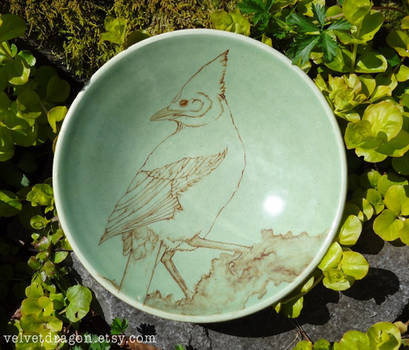 Steller's Jay Bowl by tser