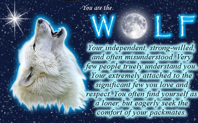 My Spirit Animal by Shay-Wolf on DeviantArt