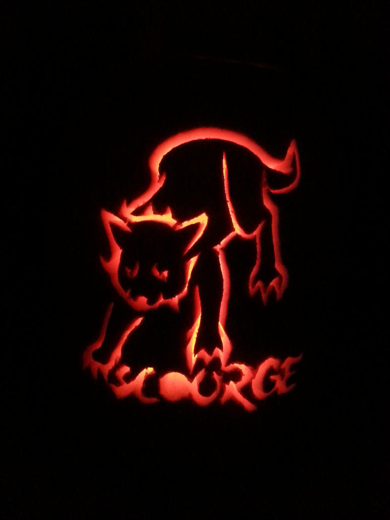 my halloween pumkin carving  scourge the cat by safari the cougar on