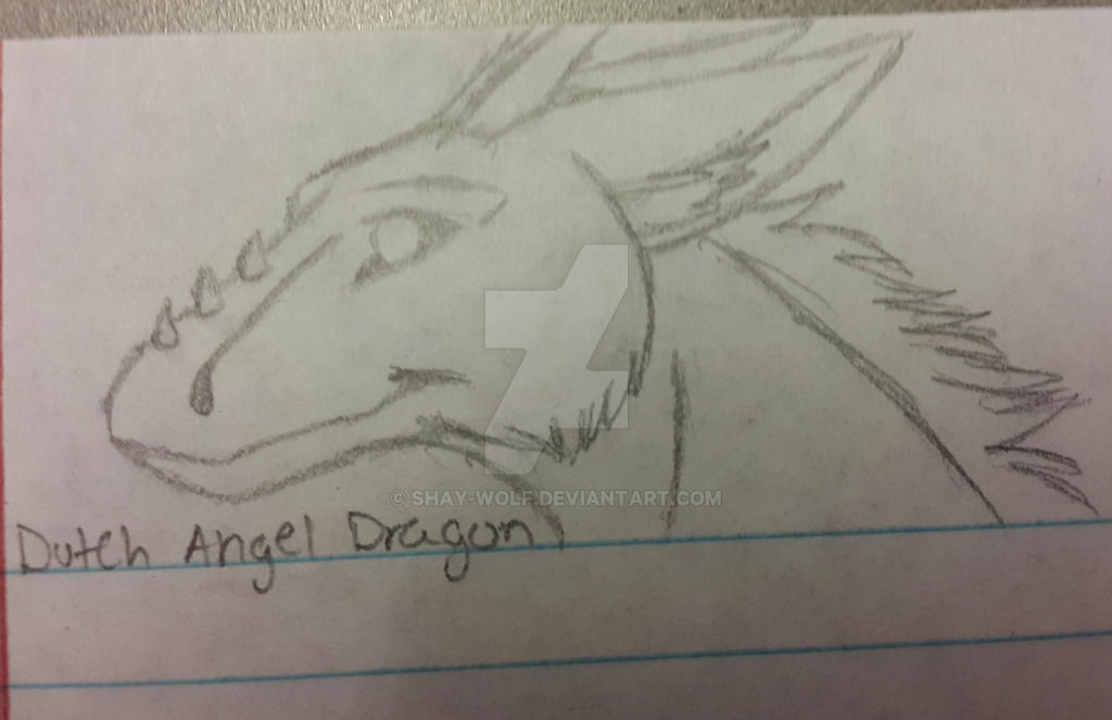 Dutch Angel Dragon Head Sketch By Shay Wolf On Deviantart