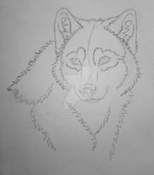 20-minute sketch