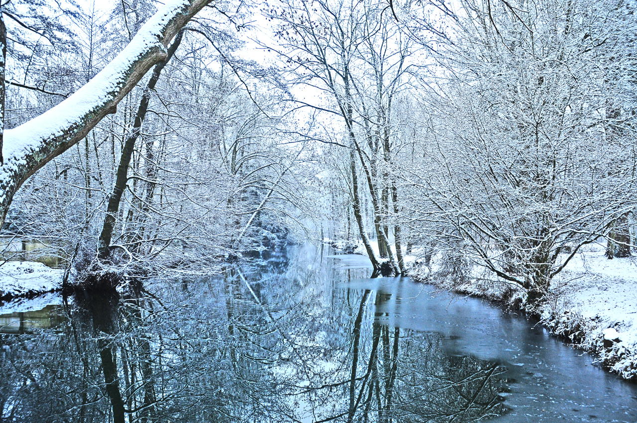 http://fc00.deviantart.net/fs41/f/2009/020/7/8/paysage_d_hiver____by_psycko91.jpg