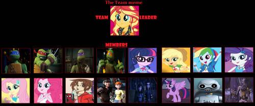 Equestria Ninja Girls Team Meme by coleroboman