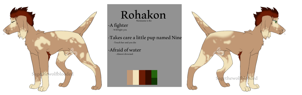 Rohakon Ref by Sagethewolfblooded