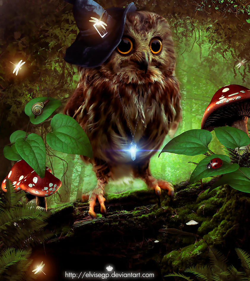 Witch owl by Elvisegp