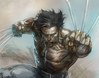 wolverine sketch by leinilyu
