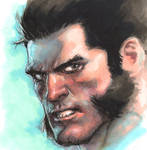 Wolvie marker on Canson Paper