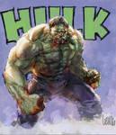 hulk digital practice