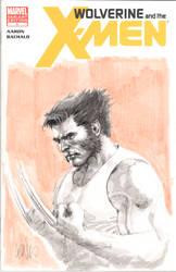 wolverine sketch cover by leinilyu