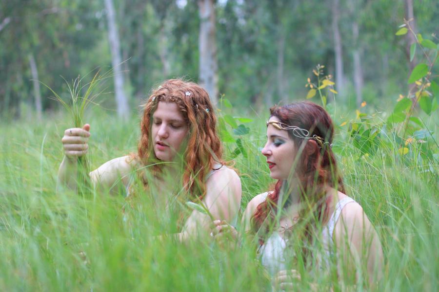 fairy forest 2 by MissKayaStock