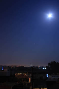 Blue Moonshine