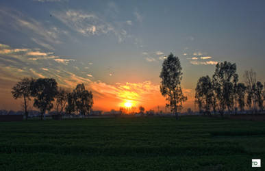 Sunset at Fields