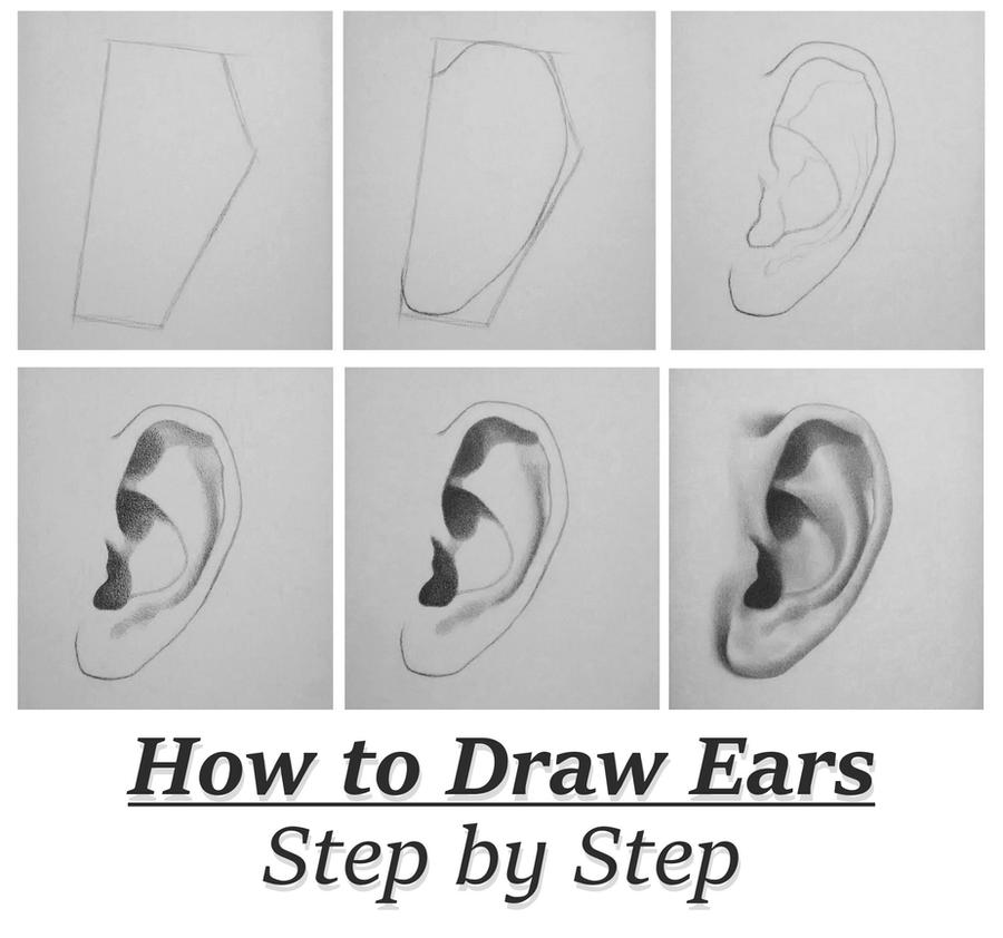 Tutorial: How To Draw Ears Step By Step by RapidFireArt on ...