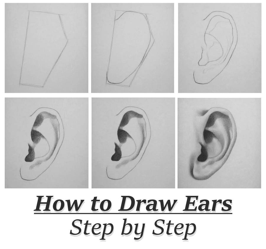 Tutorial How To Draw Ears Step By Step By Rapidfireart On Deviantart
