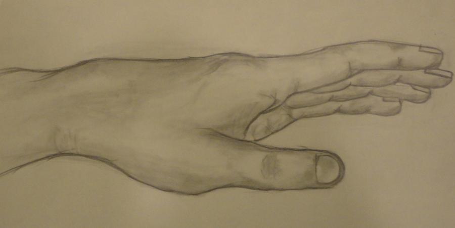 My Hand... by ericjocsam