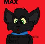 My Kitty MAX