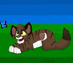 Tabby Kitten by Charlie-Breen