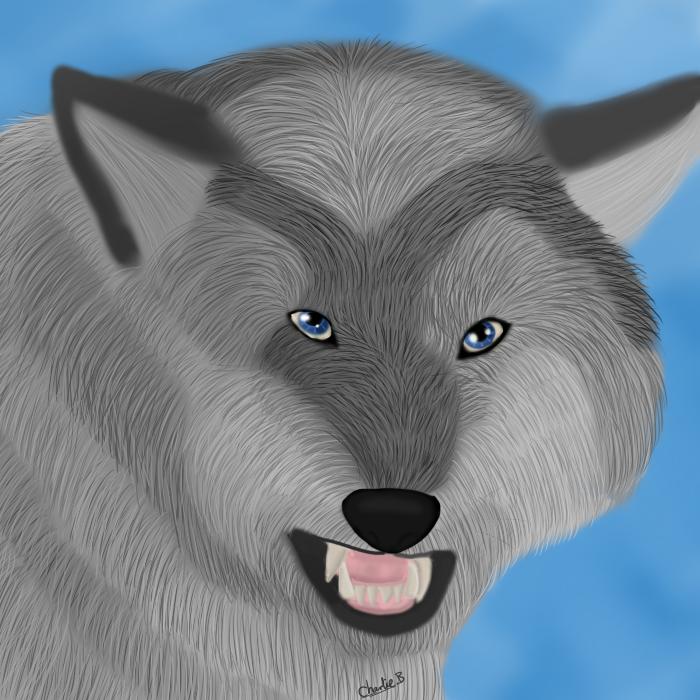 Wolf Realism