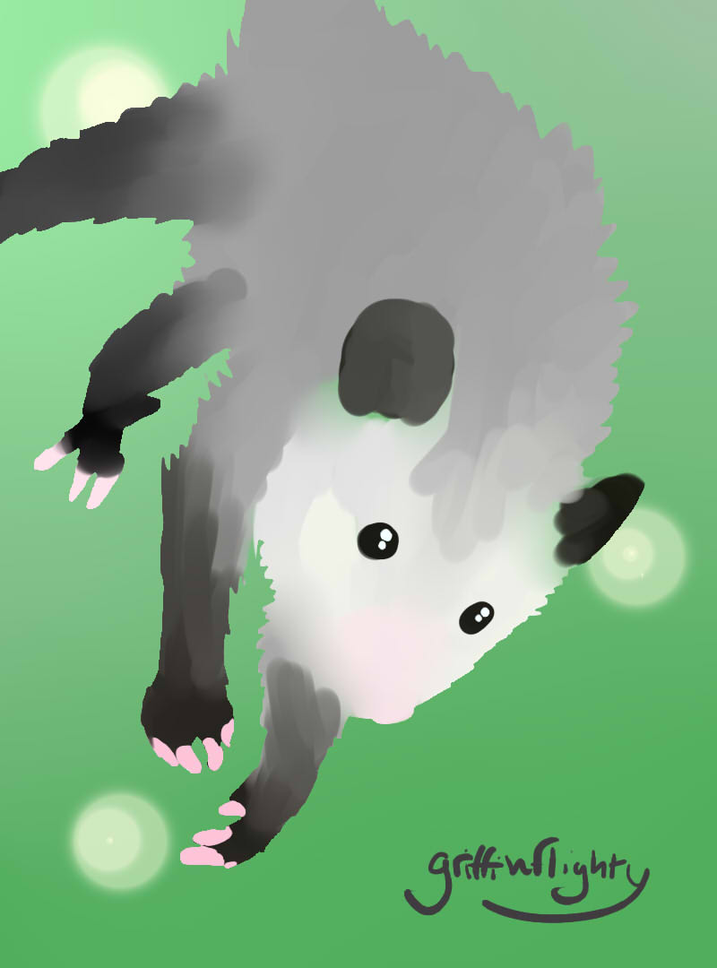 Opossum Test by griffinflighty