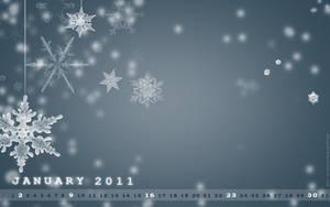 January 2011 by shilpa84